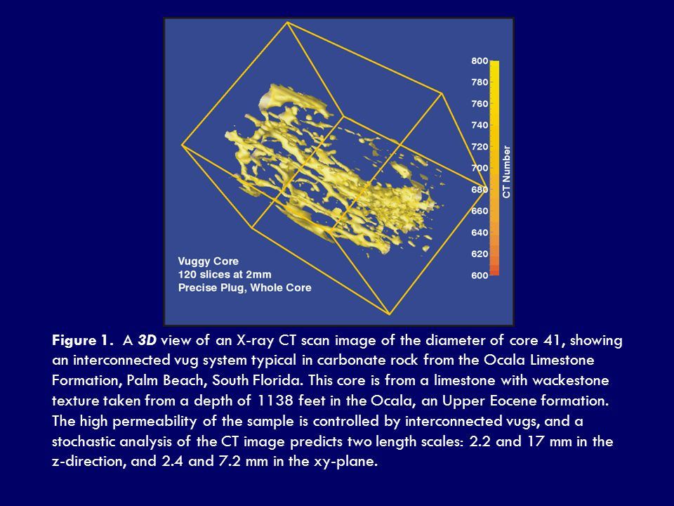 Figure 1. A 3D view of an X-ray CT scan image of the diameter of core 41, showing an interconnected vug system typical in carbonate rock from the Ocal