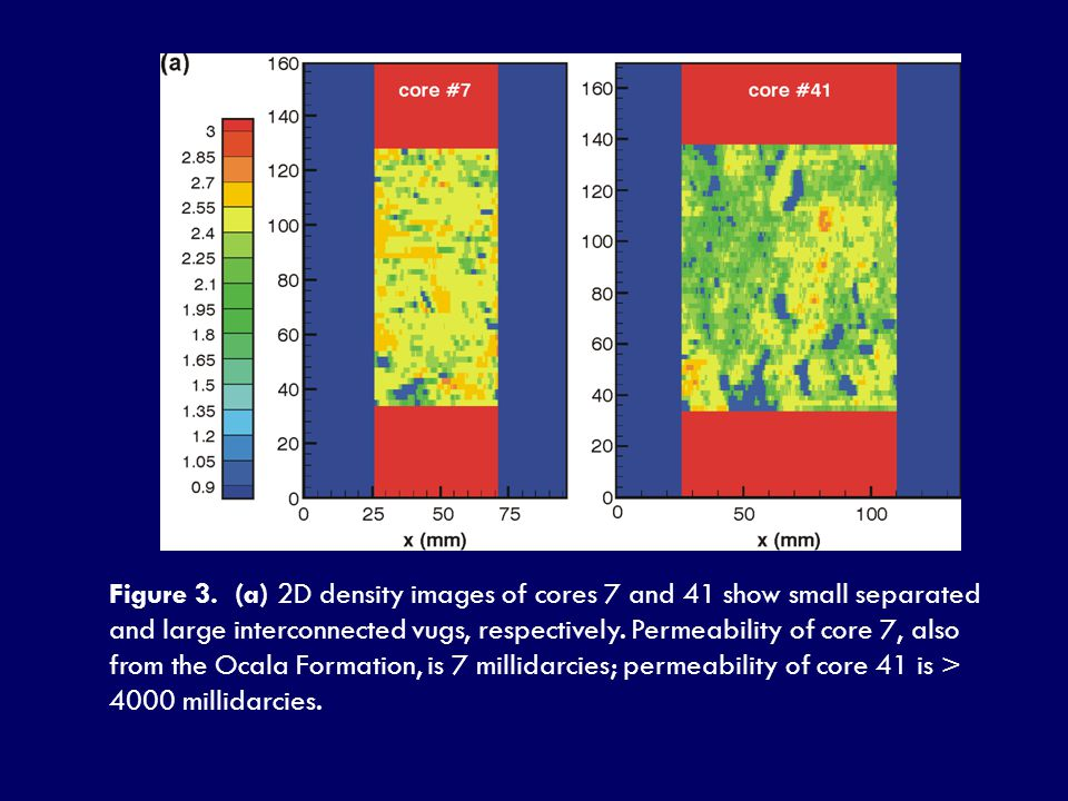 Figure 3. (a) 2D density images of cores 7 and 41 show small separated and large interconnected vugs, respectively. Permeability of core 7, also from