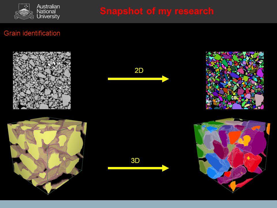 3D 2D Snapshot of my research Grain identification