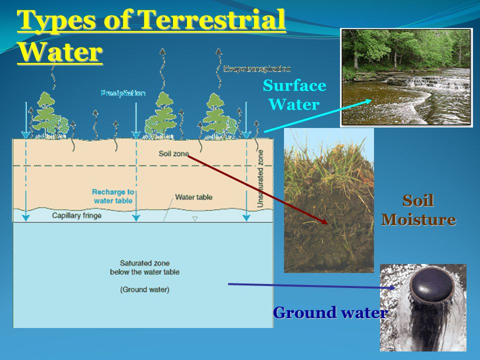 Types of Terrestrial Water Ground water SoilMoisture Surface Water