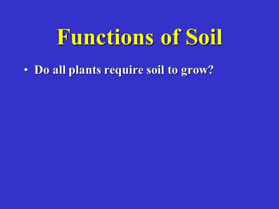 Functions of Soil Do all plants require soil to grow?Do all plants require soil to grow?