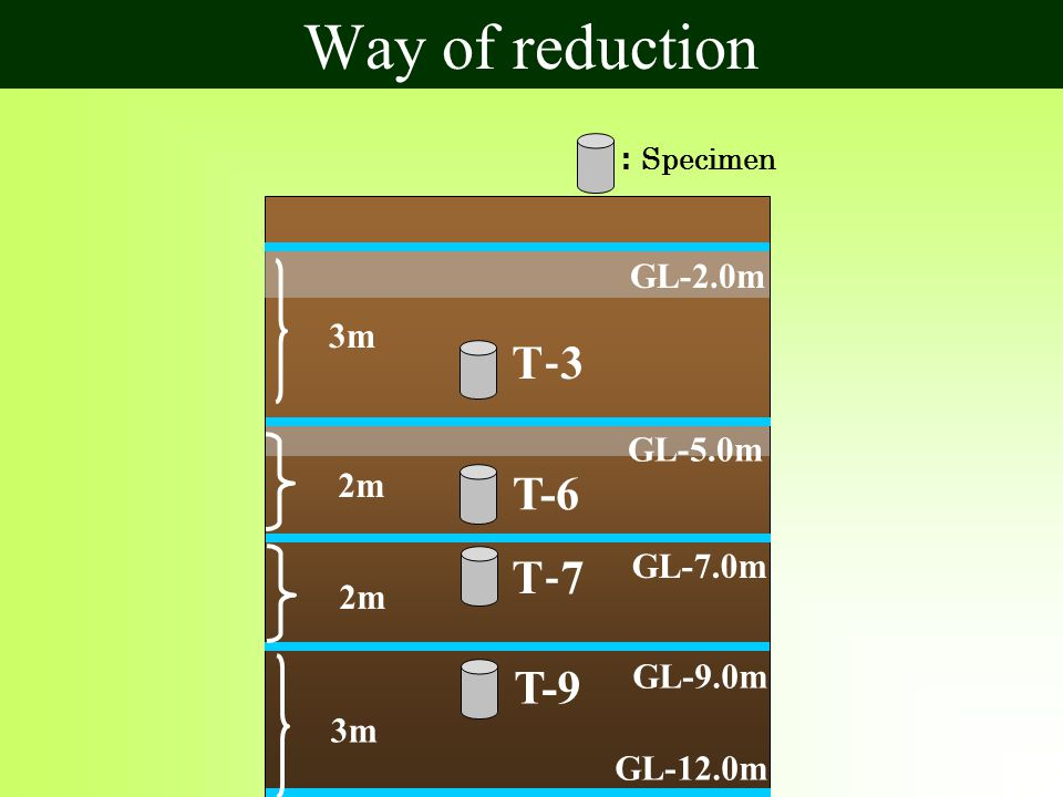 : Specimen T‐7T‐7 T‐3T‐3 T-6 T-9 GL-5.0m GL-2.0m GL-7.0m GL-9.0m GL-12.0m 3m 2m 3m Way of reduction