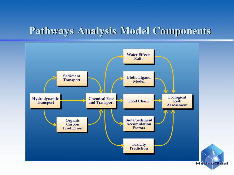 Pathways Analysis Model Components