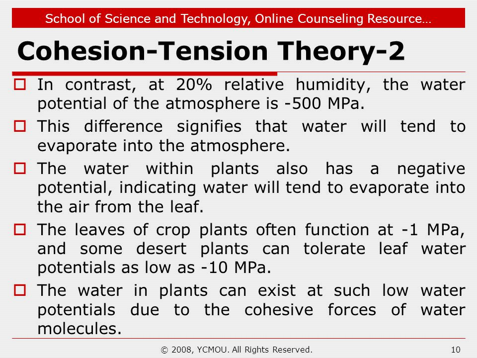 School of Science and Technology, Online Counseling Resource… Cohesion-Tension Theory-2  In contrast, at 20% relative humidity, the water potential o