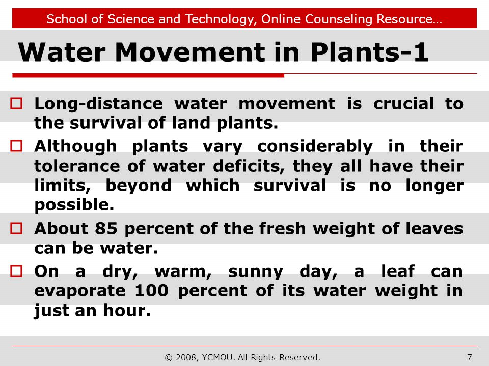 School of Science and Technology, Online Counseling Resource… Water Movement in Plants-1  Long-distance water movement is crucial to the survival of