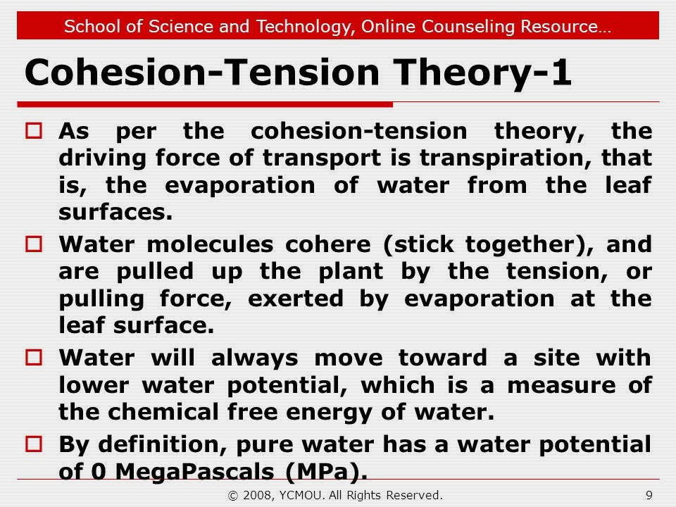 School of Science and Technology, Online Counseling Resource… Cohesion-Tension Theory-1  As per the cohesion-tension theory, the driving force of tra