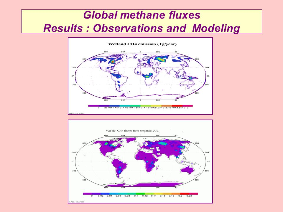 Global methane fluxes Results : Observations and Modeling