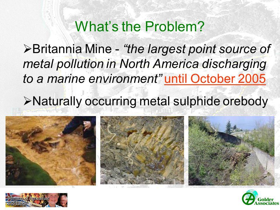 Environmental Monitoring Findings Britannia Shoreline 3 main program components: –Marine water quality –Nearshore groundwater quality (porewater) –Shoreline ecology