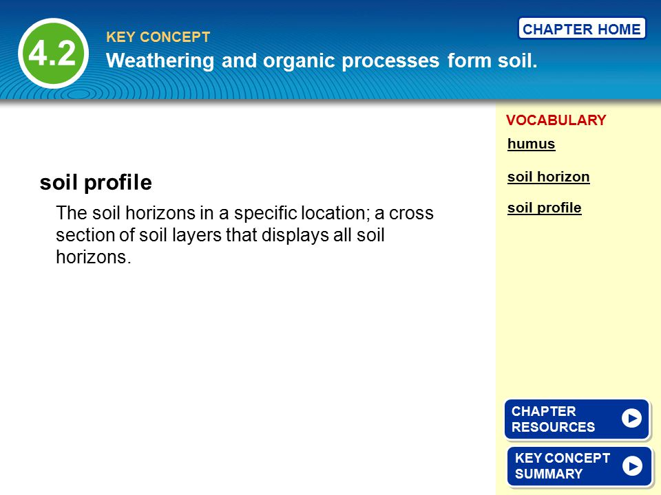VOCABULARY KEY CONCEPT CHAPTER HOME The soil horizons in a specific location; a cross section of soil layers that displays all soil horizons. soil pro