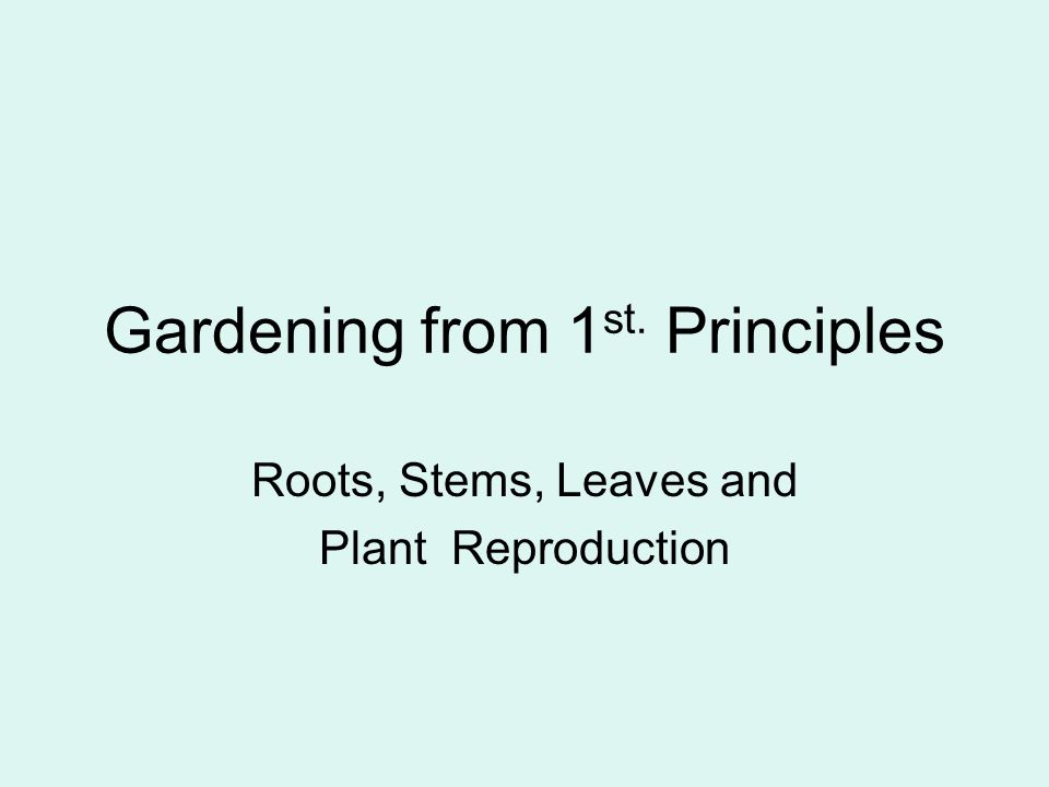 Gardening from 1 st. Principles Roots, Stems, Leaves and Plant Reproduction