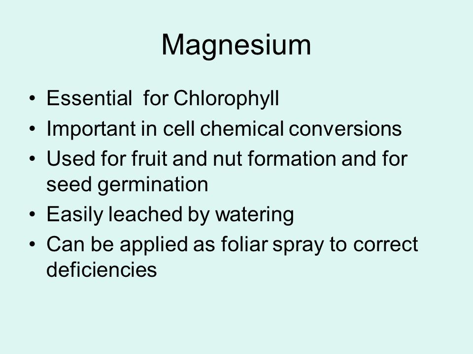 Magnesium Essential for Chlorophyll Important in cell chemical conversions Used for fruit and nut formation and for seed germination Easily leached by watering Can be applied as foliar spray to correct deficiencies
