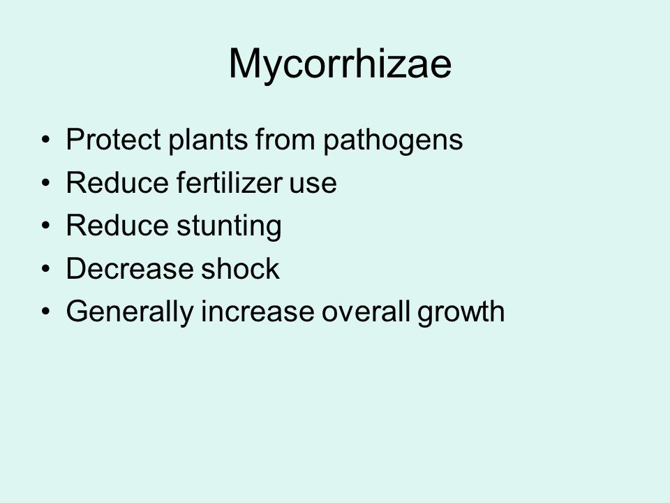 Protect plants from pathogens Reduce fertilizer use Reduce stunting Decrease shock Generally increase overall growth