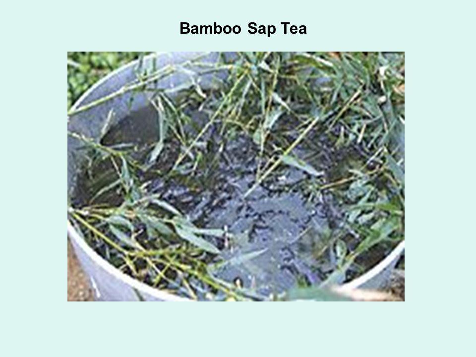 Bamboo Sap Tea