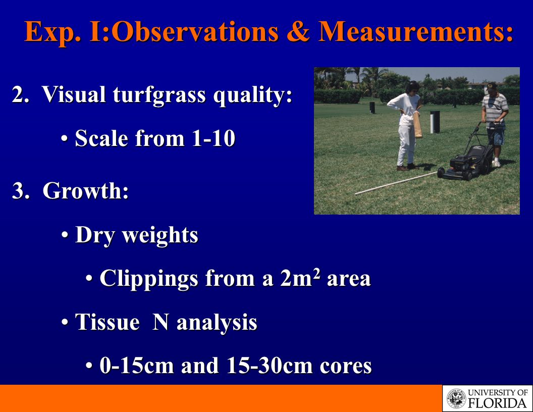 Exp. I:Observations & Measurements: 3.