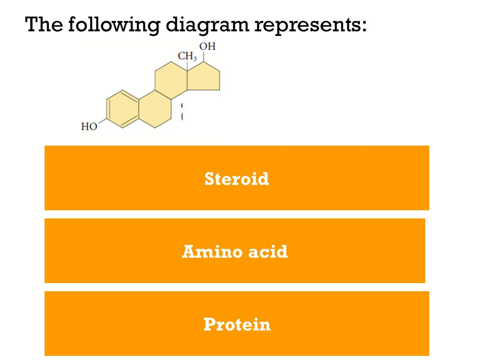The following diagram represents: Steroid Protein Amino acid