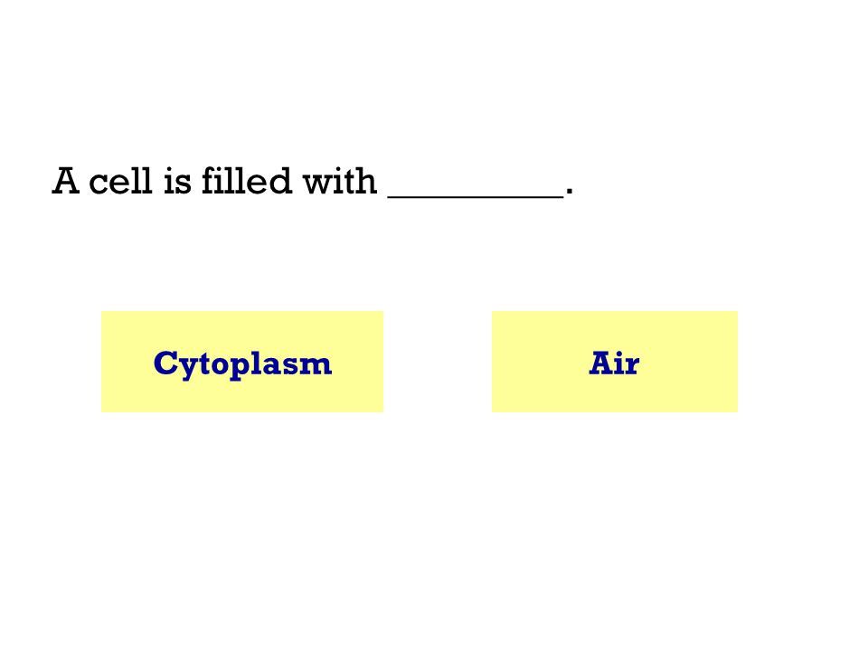 A cell is filled with _________. CytoplasmAir