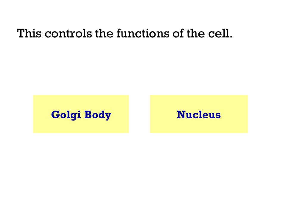 This controls the functions of the cell. Golgi BodyNucleus