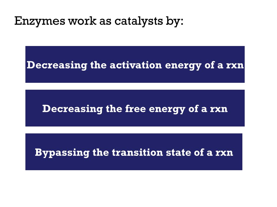 Enzymes work as catalysts by: Decreasing the activation energy of a rxn Decreasing the free energy of a rxn Bypassing the transition state of a rxn