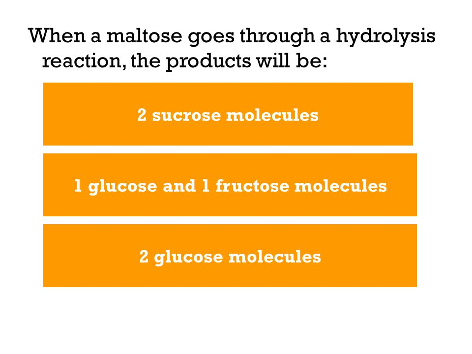 When a maltose goes through a hydrolysis reaction, the products will be: 2 glucose molecules 1 glucose and 1 fructose molecules 2 sucrose molecules