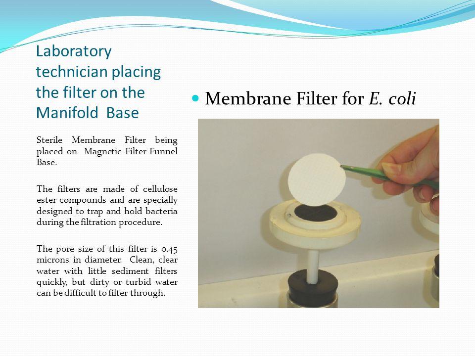 Polysulfone Filter Funnel on Filter Manifold.