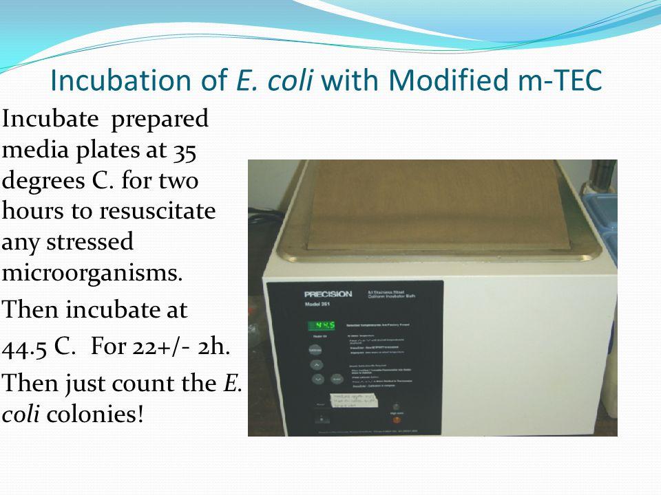 Modified m-TEC Plates with E.