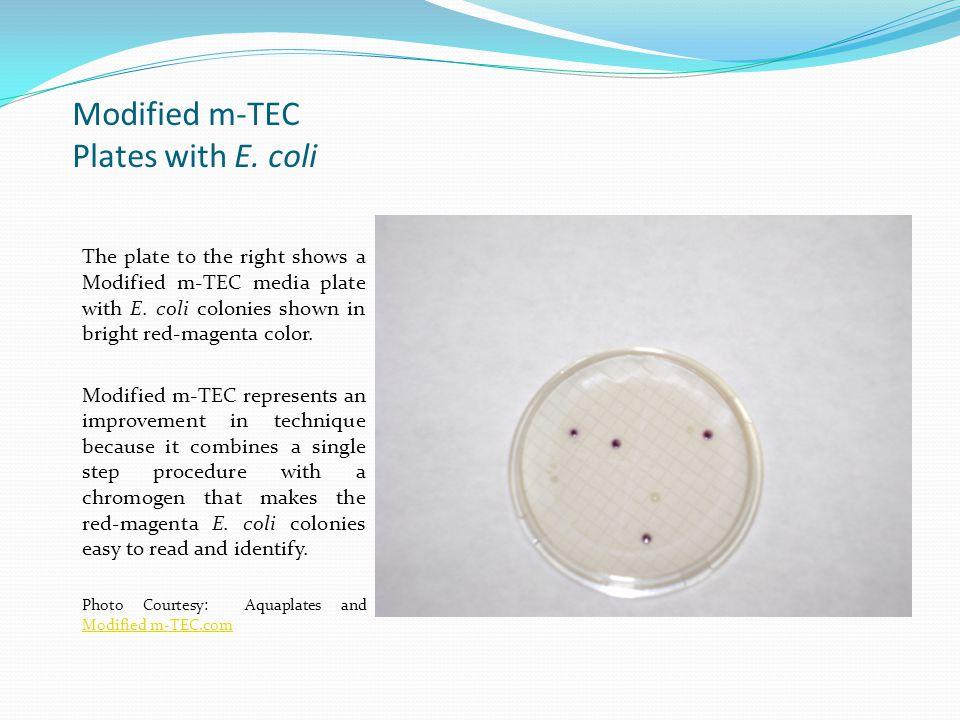 E.Coli with Method EPA 1603: Modified m-TEC This has been a presentation of E.