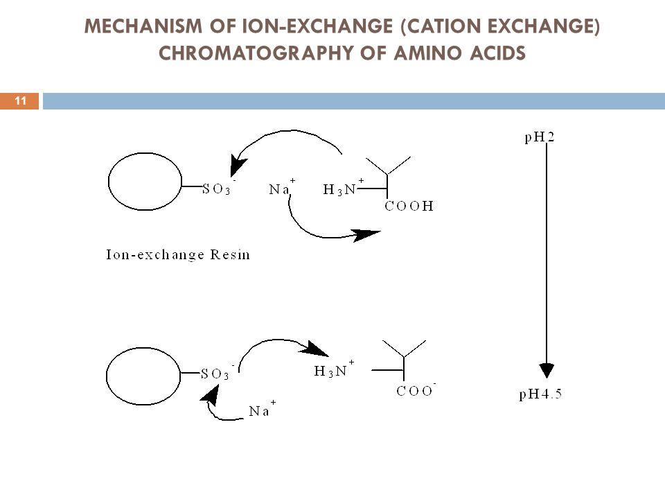 MECHANISM OF ION-EXCHANGE (CATION EXCHANGE) CHROMATOGRAPHY OF AMINO ACIDS 11