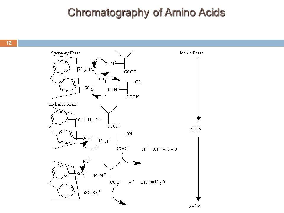Chromatography of Amino Acids 12