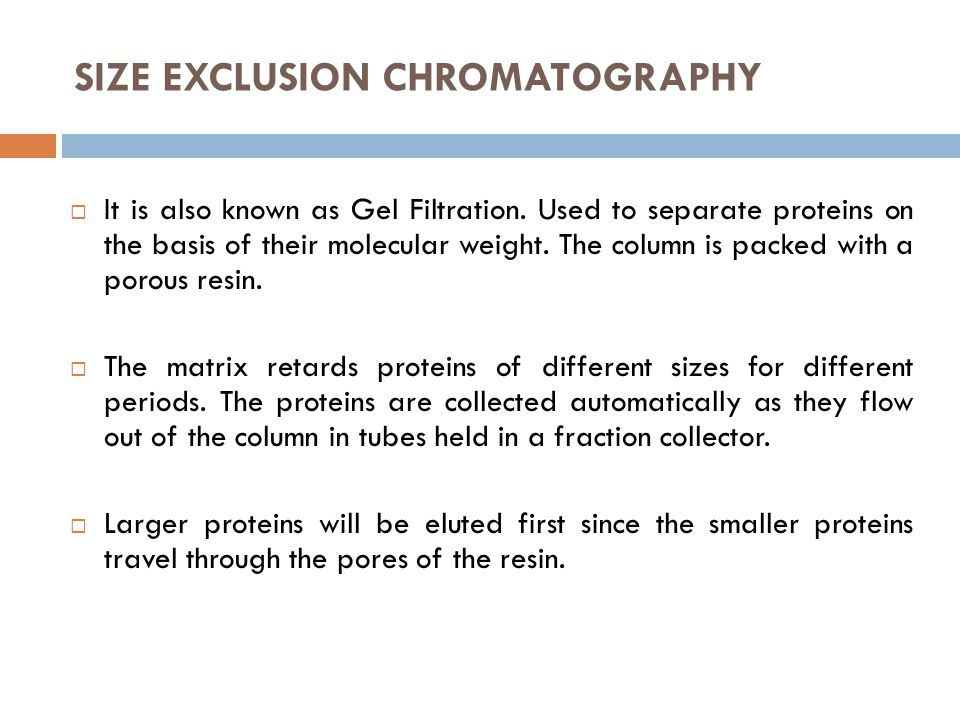 SIZE EXCLUSION CHROMATOGRAPHY  It is also known as Gel Filtration. Used to separate proteins on the basis of their molecular weight. The column is pa