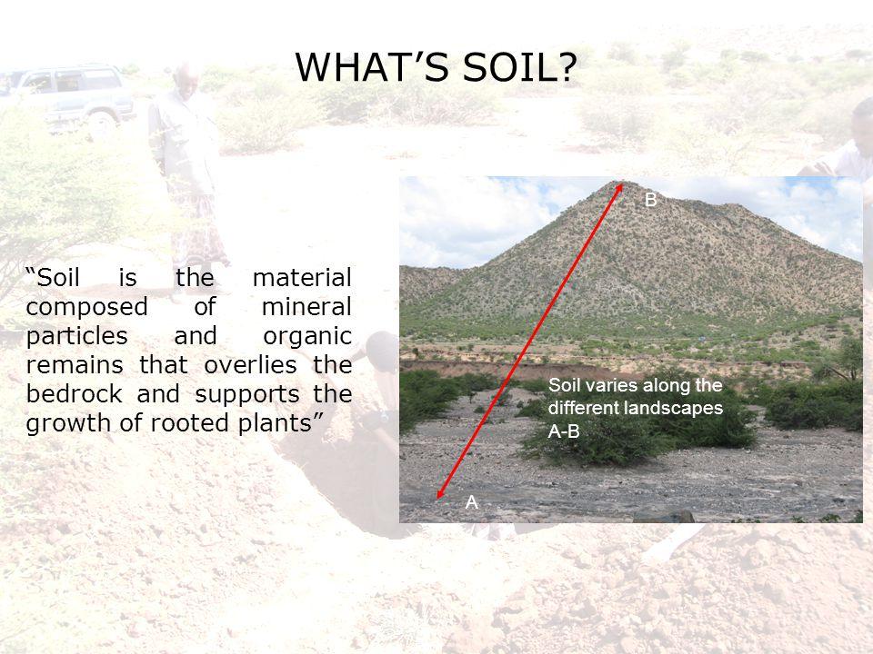 WHAT'S SOIL.