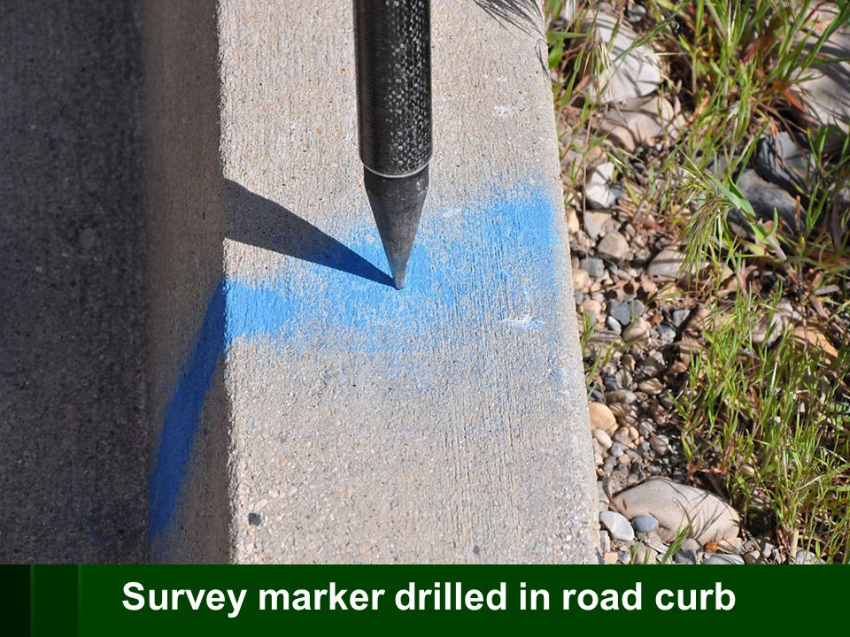 Survey marker drilled in road curb