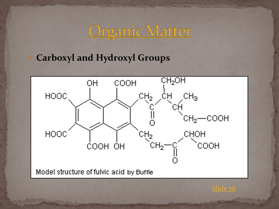 Carboxyl and Hydroxyl Groups Slide 78