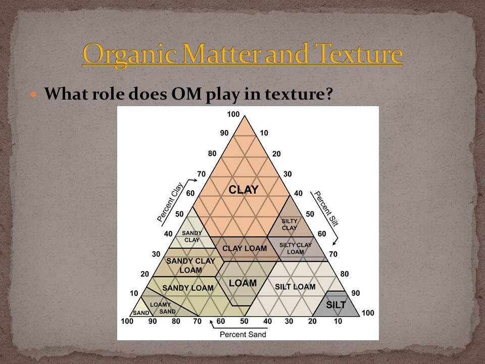 What role does OM play in texture