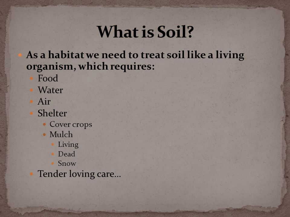 As a habitat we need to treat soil like a living organism, which requires: Food Water Air Shelter Cover crops Mulch Living Dead Snow Tender loving care…