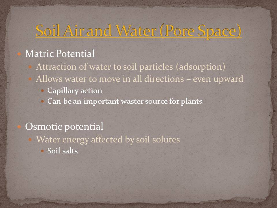 Matric Potential Attraction of water to soil particles (adsorption) Allows water to move in all directions – even upward Capillary action Can be an important waster source for plants Osmotic potential Water energy affected by soil solutes Soil salts