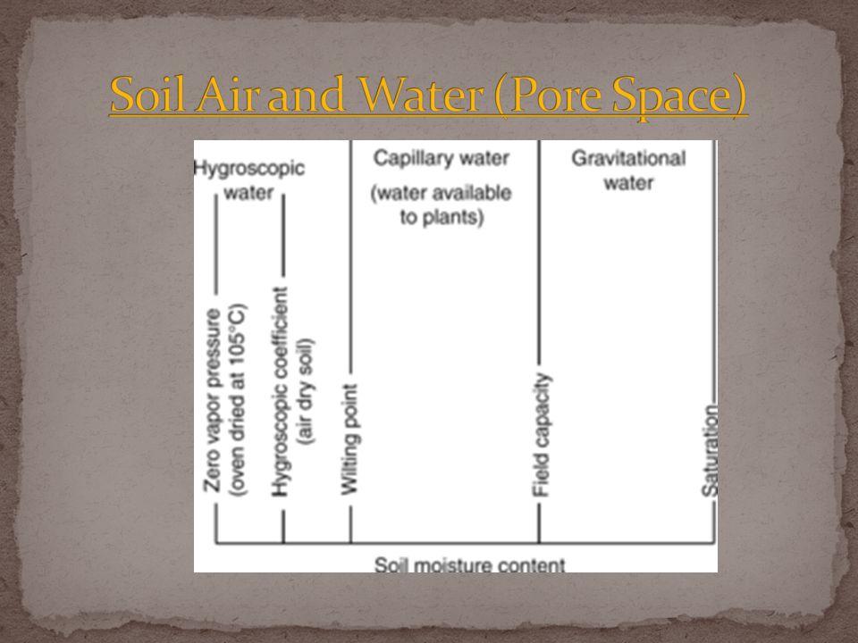 Applying Water Three sources Rain water Irrigation Soil water/water table Methods Overhead Drip irrigation Flood Dry land