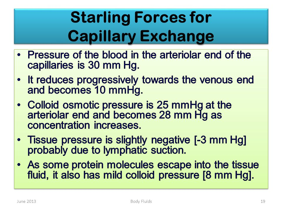 Starling Forces for Capillary Exchange June 201319Body Fluids