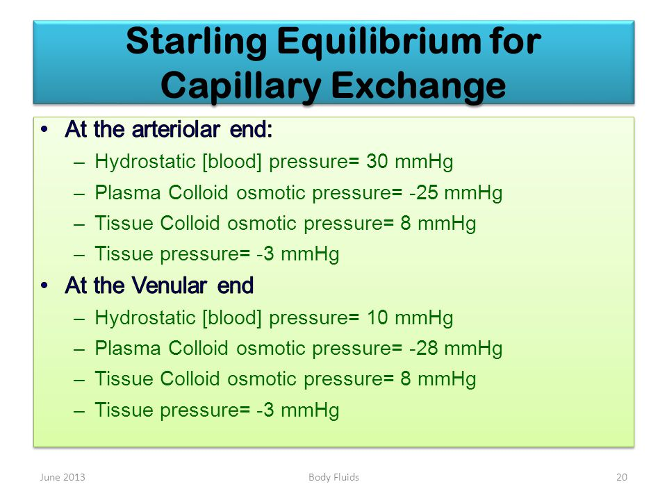 Starling Equilibrium for Capillary Exchange June 201320Body Fluids