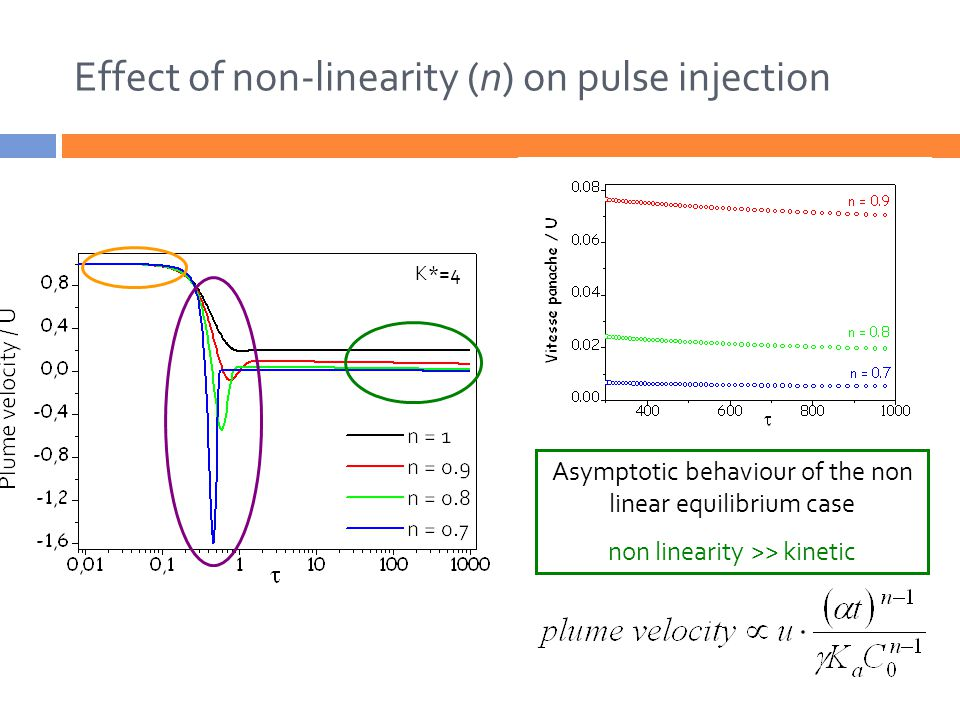 At short term, the sole effect is kinetic Kinetic >> non-linearity Double peak effects amplified by the non-linearity non linearity ~ kinetic K*=4 Effect of non-linearity (n) on pulse injection Asymptotic behaviour of the non linear equilibrium case non linearity >> kinetic