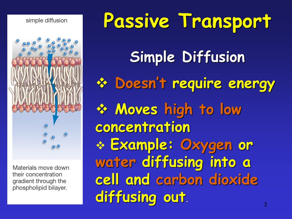 3 Passive Transport Simple Diffusion  Doesn't require energy  Moves high to low concentration Example: Oxygen or water diffusing into a cell and carbon dioxide diffusing out  Example: Oxygen or water diffusing into a cell and carbon dioxide diffusing out.