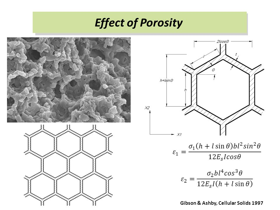 Effect of Porosity Gibson & Ashby, Cellular Solids 1997