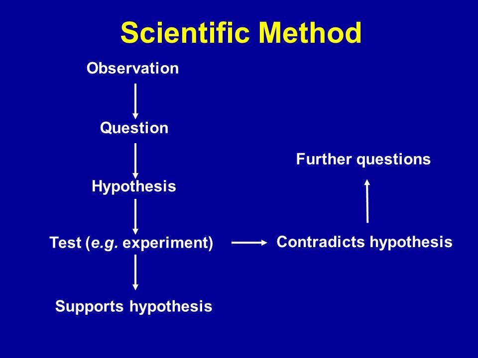 Scientific Method Observation Question Hypothesis Test (e.g.