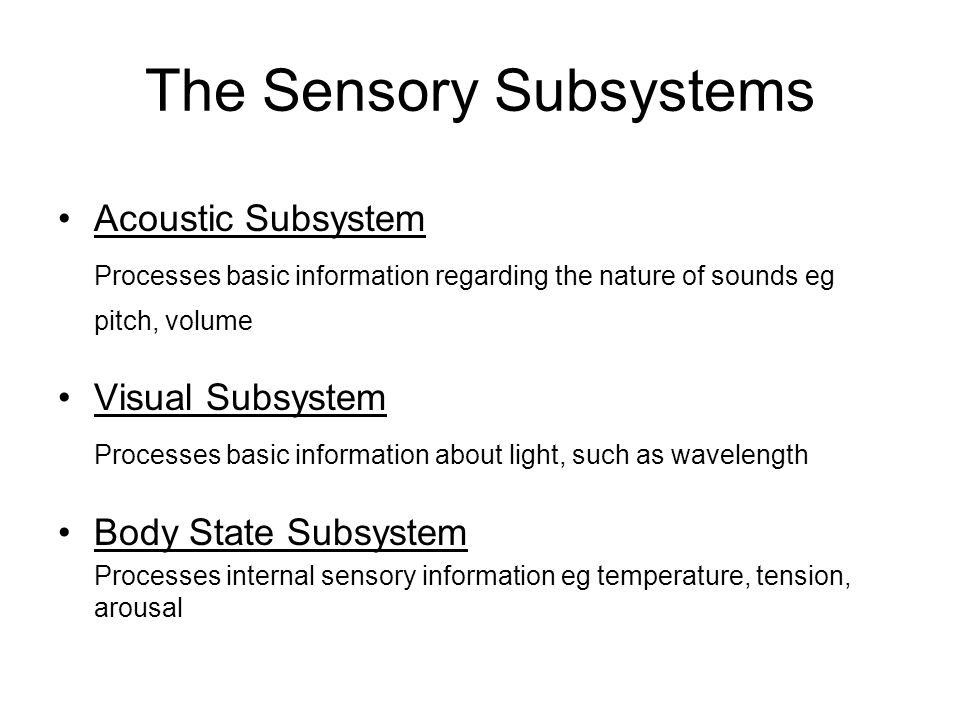The Sensory Subsystems Acoustic Subsystem Processes basic information regarding the nature of sounds eg pitch, volume Visual Subsystem Processes basic