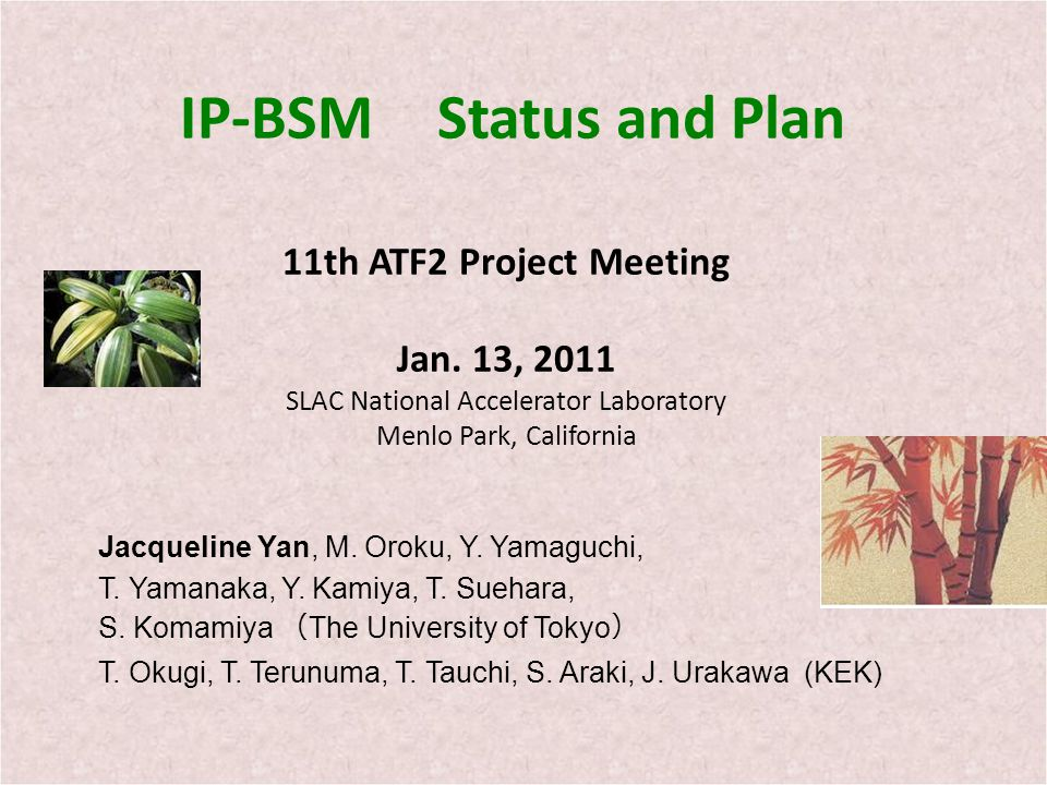 IP-BSM Status and Plan 11th ATF2 Project Meeting Jan.