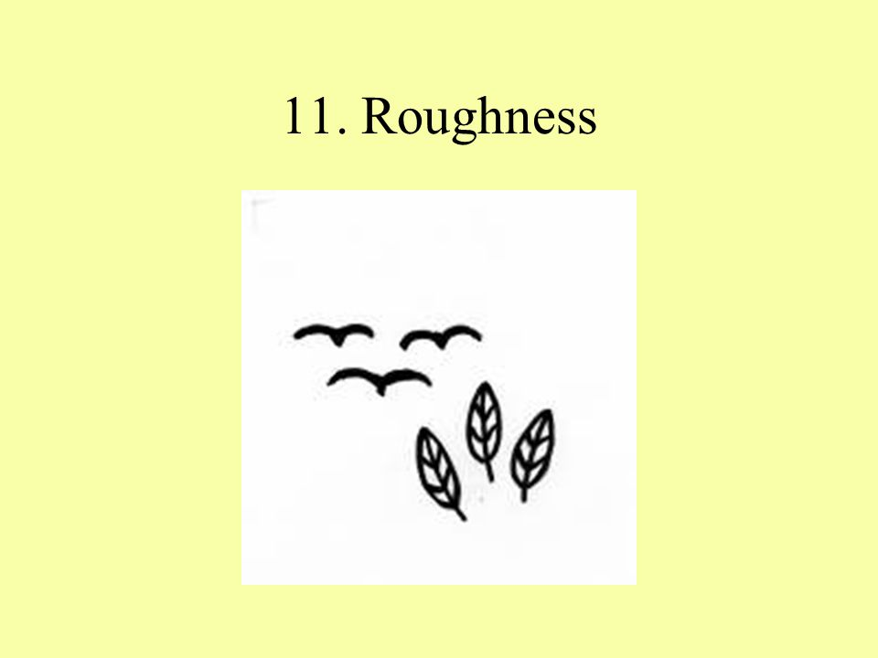 11. Roughness