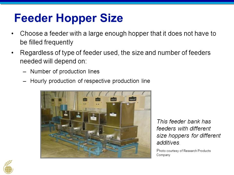 Feeder Hopper Size Choose a feeder with a large enough hopper that it does not have to be filled frequently Regardless of type of feeder used, the siz