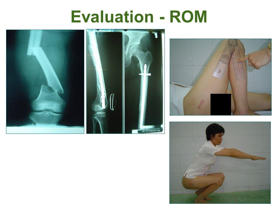 Evaluation - ROM
