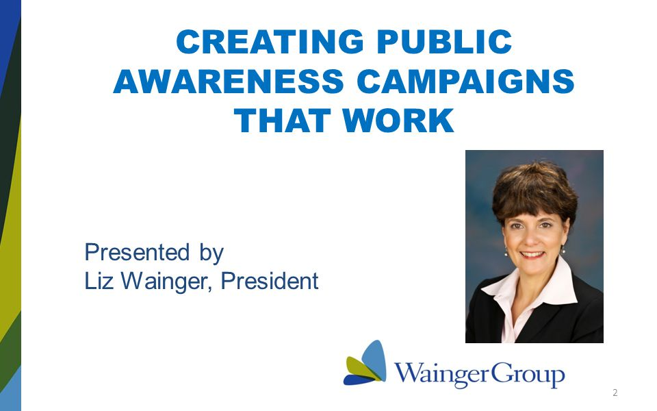 CREATING PUBLIC AWARENESS CAMPAIGNS THAT WORK Presented by Liz Wainger, President 2