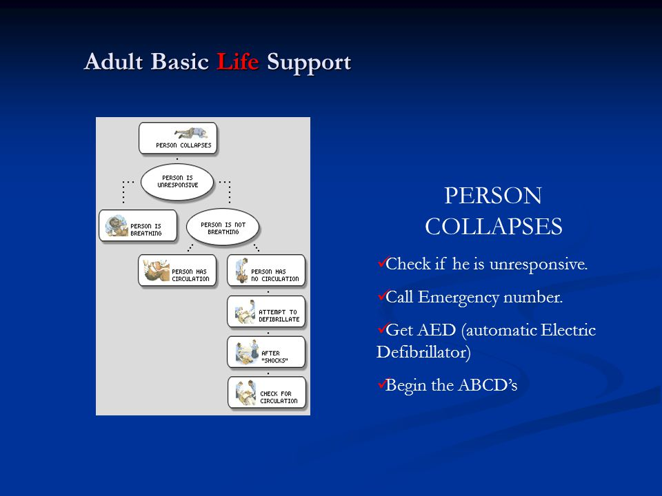 Adult Basic Life Support PERSON COLLAPSES Check if he is unresponsive. Call Emergency number. Get AED (automatic Electric Defibrillator) Begin the ABC