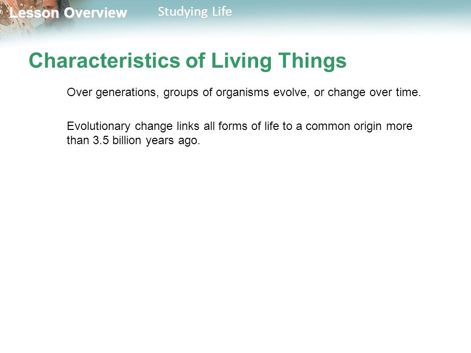 Lesson Overview Lesson Overview Studying Life Characteristics of Living Things Over generations, groups of organisms evolve, or change over time. Evol